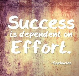 quote___success_is_dependent_on_effort_by_rabidbribri-d68mkua