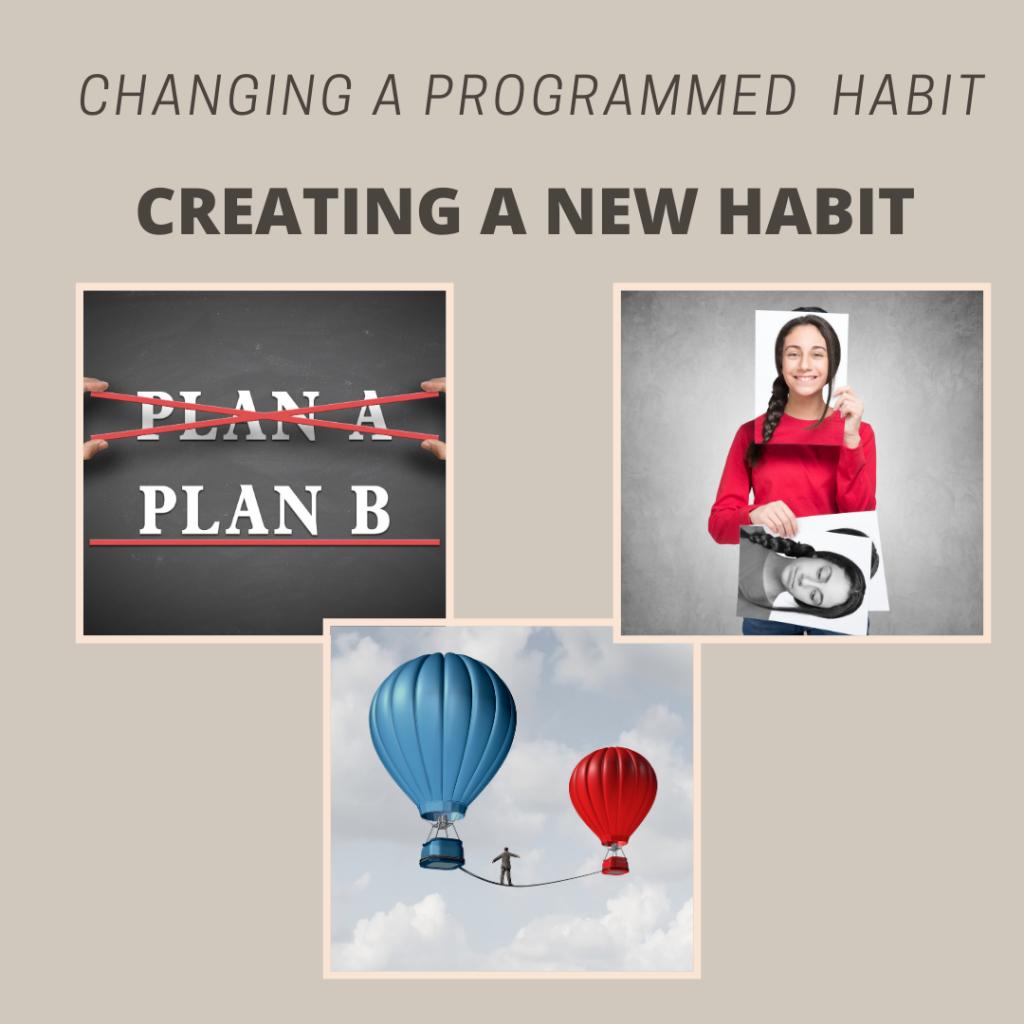 program new habit